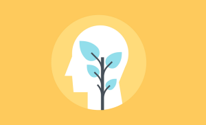 Groeimindset vergroten en stimulieren - 3 strategieën