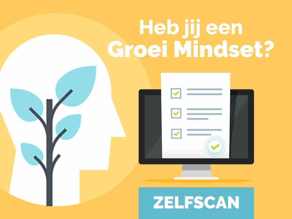 Zelfscan groei mindset